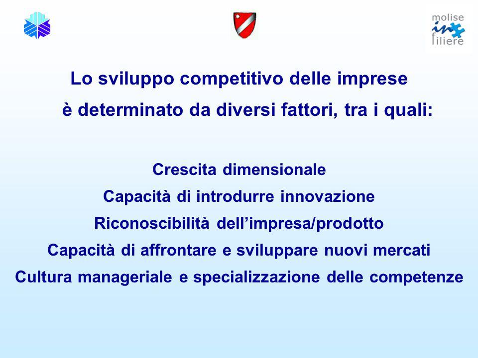 Lo sviluppo competitivo delle imprese è determinato da diversi fattori, tra i quali: Crescita dimensionale Capacità di introdurre innovazione Riconoscibilità dell'impresa/prodotto Capacità di affrontare e sviluppare nuovi mercati Cultura manageriale e specializzazione delle competenze