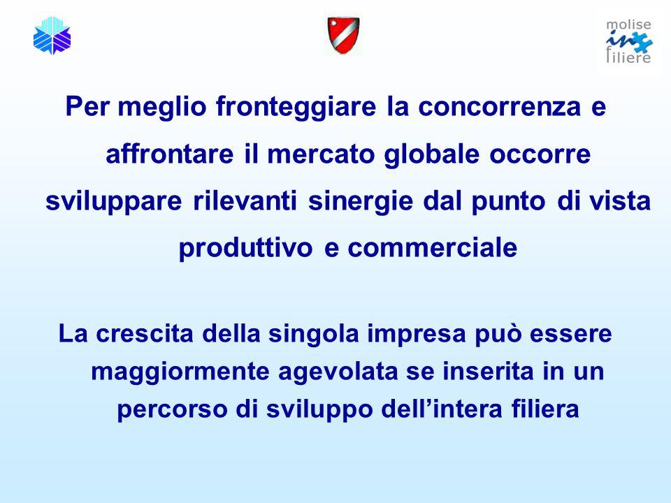 Per meglio fronteggiare la concorrenza e affrontare il mercato globale occorre sviluppare rilevanti sinergie dal punto di vista produttivo e commerciale La crescita della singola impresa può essere maggiormente agevolata se inserita in un percorso di sviluppo dell'intera filiera