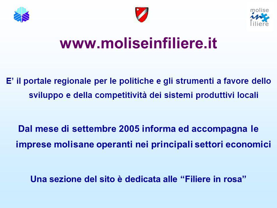 www.moliseinfiliere.it E' il portale regionale per le politiche e gli strumenti a favore dello sviluppo e della competitività dei sistemi produttivi l