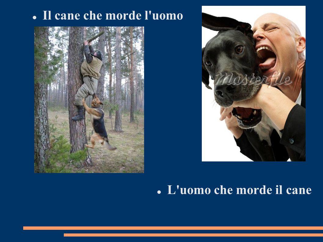 Il cane che morde l uomo L uomo che morde il cane