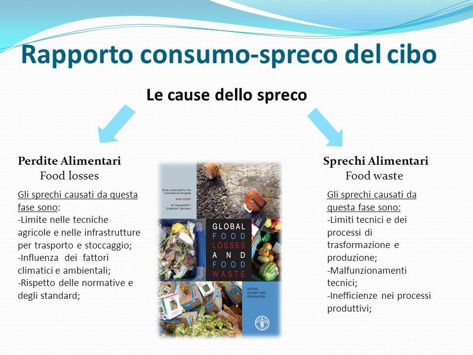 Rapporto consumo-spreco del cibo Le cause dello spreco Food lossesFood waste Perdite AlimentariSprechi Alimentari Gli sprechi causati da questa fase s