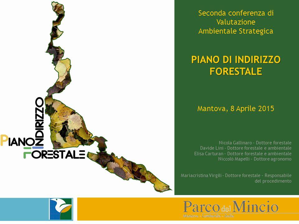 Seconda conferenza di Valutazione Ambientale Strategica PIANO DI INDIRIZZO FORESTALE Mantova, 8 Aprile 2015 Nicola Gallinaro – Dottore forestale David