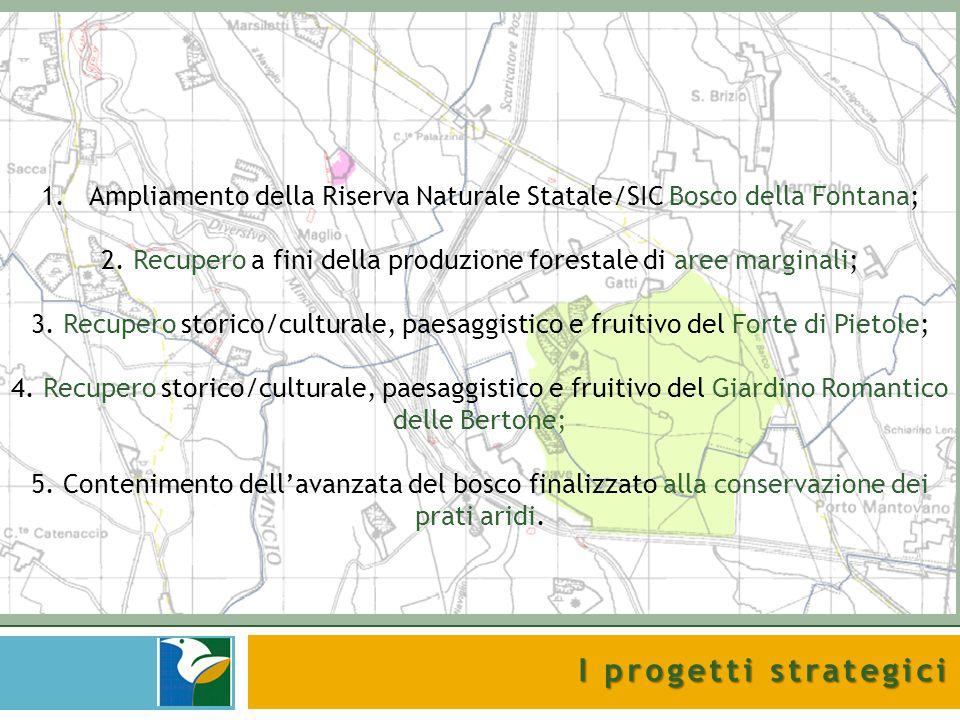I progetti strategici 1.Ampliamento della Riserva Naturale Statale/SIC Bosco della Fontana; 2. Recupero a fini della produzione forestale di aree marg