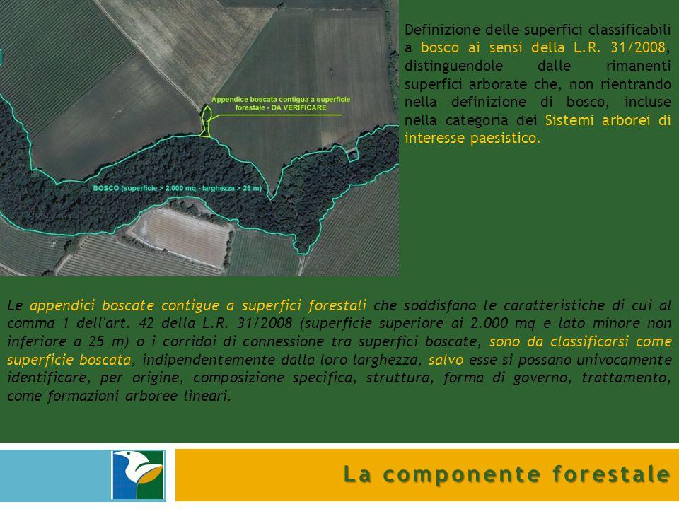 La componente forestale Sono state identificate superfici forestali in senso stretto (bosco) per 791 ha, sistemi arborei di interesse paesistico per 31 ha ed elementi lineari (siepi, filari, fasce tampone,…) per un totale di 702 km.