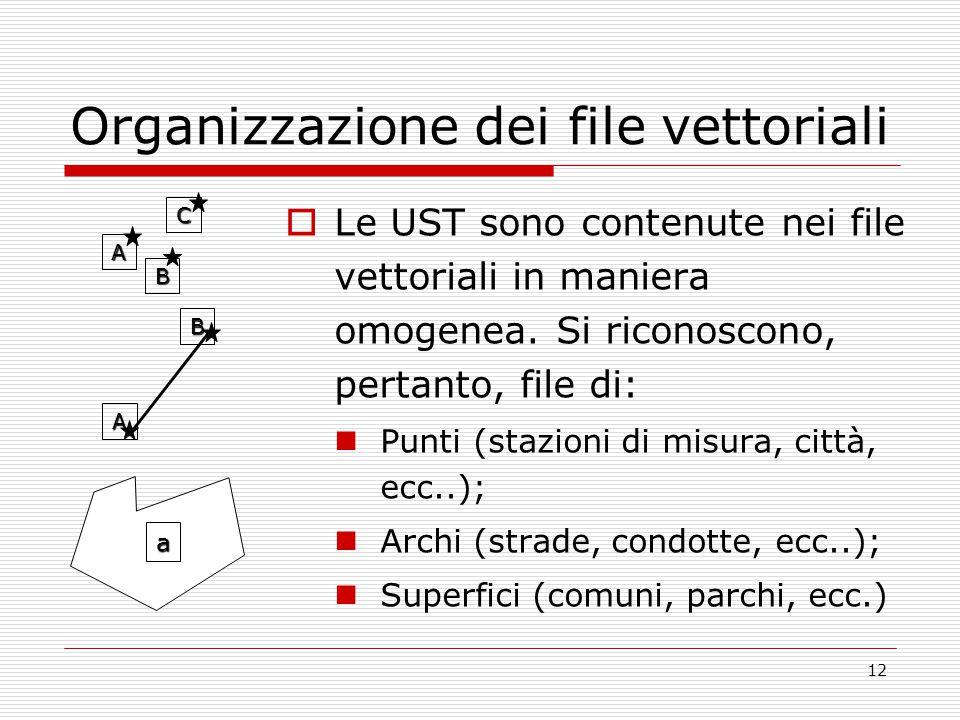 12 Organizzazione dei file vettoriali  Le UST sono contenute nei file vettoriali in maniera omogenea.