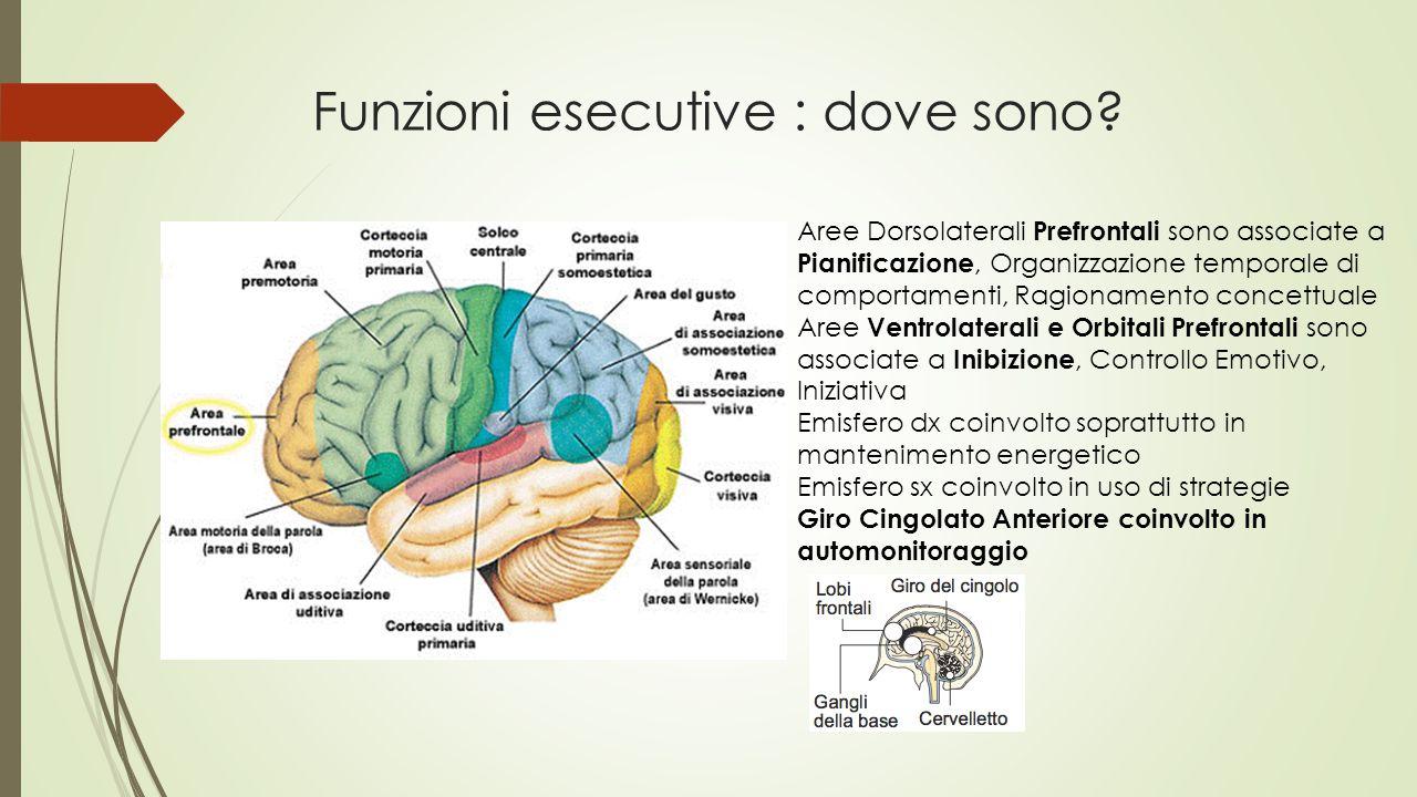 Funzioni esecutive : dove sono? Aree Dorsolaterali Prefrontali sono associate a Pianificazione, Organizzazione temporale di comportamenti, Ragionament