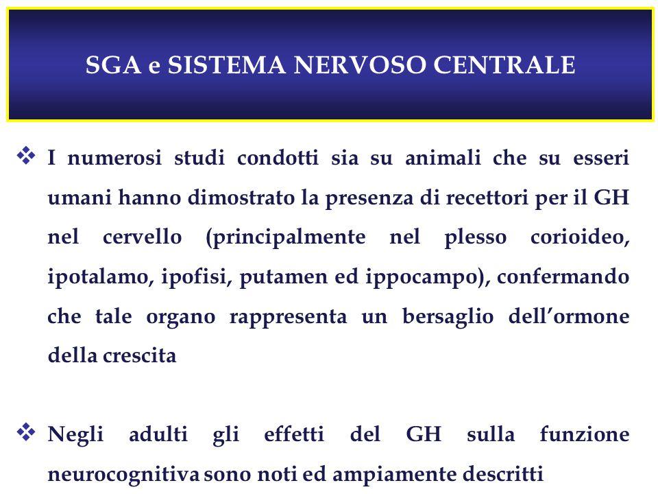SGA e SISTEMA NERVOSO CENTRALE  I numerosi studi condotti sia su animali che su esseri umani hanno dimostrato la presenza di recettori per il GH nel cervello (principalmente nel plesso corioideo, ipotalamo, ipofisi, putamen ed ippocampo), confermando che tale organo rappresenta un bersaglio dell'ormone della crescita  Negli adulti gli effetti del GH sulla funzione neurocognitiva sono noti ed ampiamente descritti