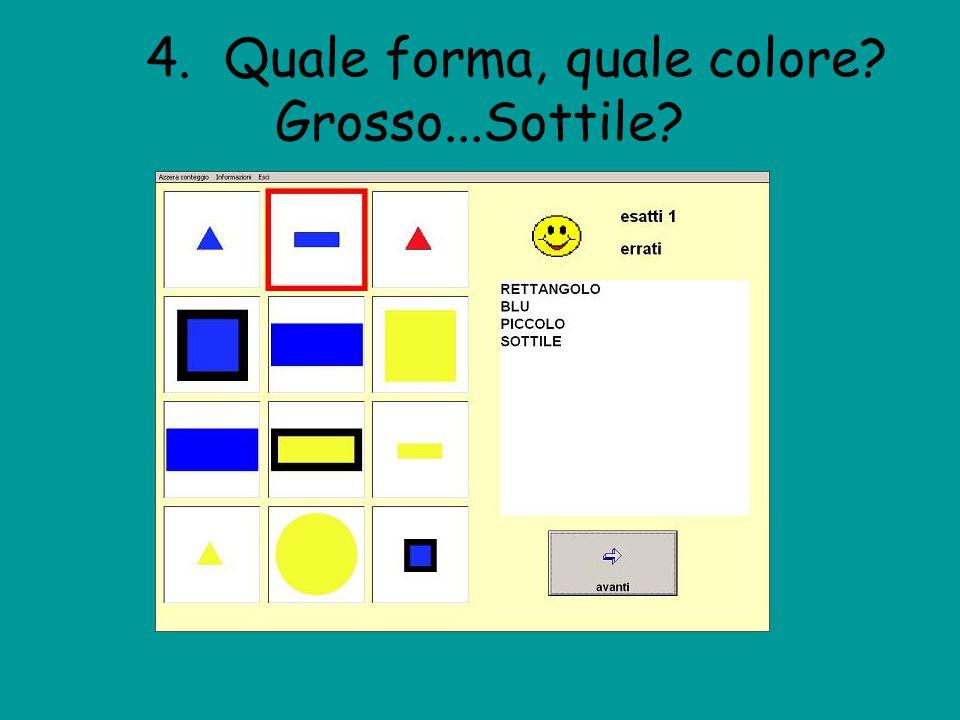 4. Quale forma, quale colore? Grosso...Sottile?