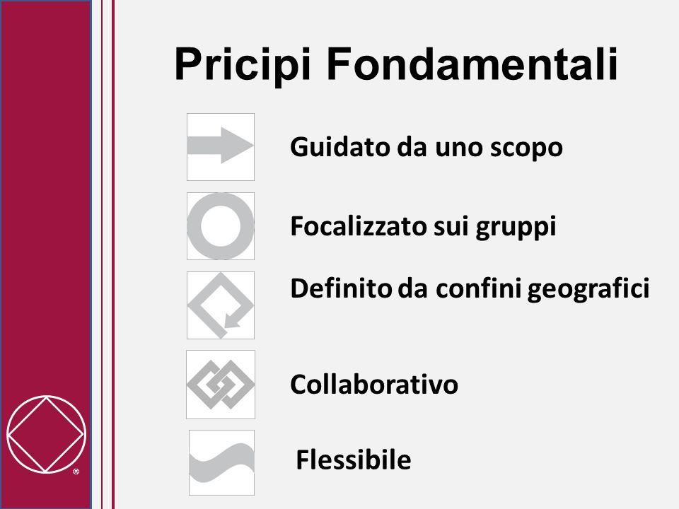  Pricipi Fondamentali Guidato da uno scopo Flessibile Definito da confini geografici Focalizzato sui gruppi Collaborativo