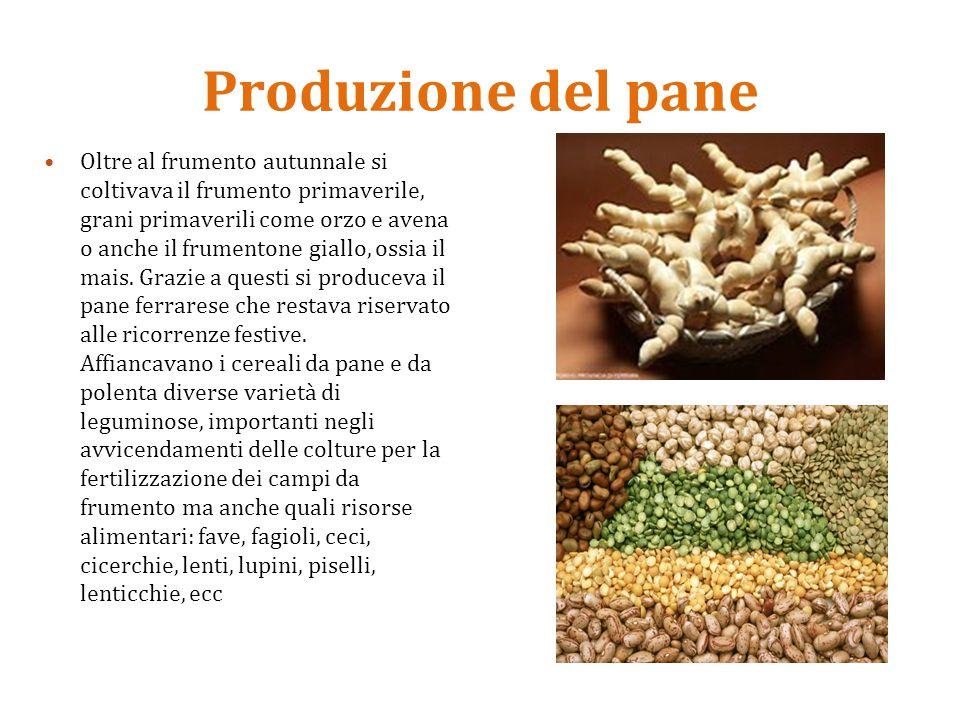 Produzione del pane Oltre al frumento autunnale si coltivava il frumento primaverile, grani primaverili come orzo e avena o anche il frumentone giallo, ossia il mais.