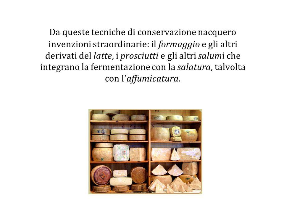 Da queste tecniche di conservazione nacquero invenzioni straordinarie: il formaggio e gli altri derivati del latte, i prosciutti e gli altri salumi ch