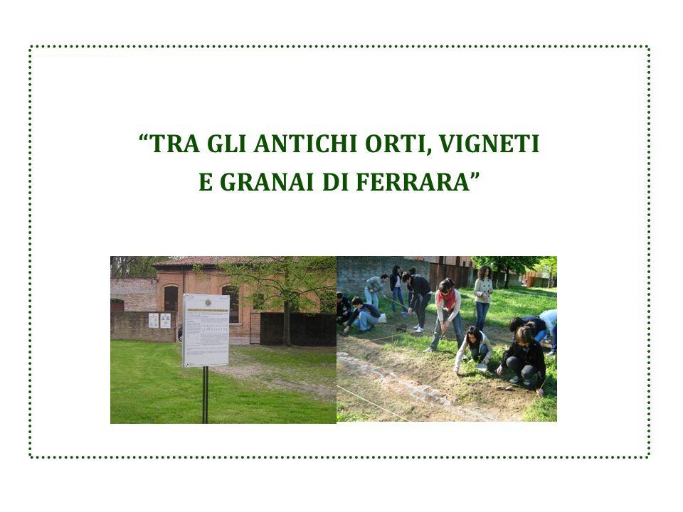"""""""TRA GLI ANTICHI ORTI, VIGNETI E GRANAI DI FERRARA"""""""