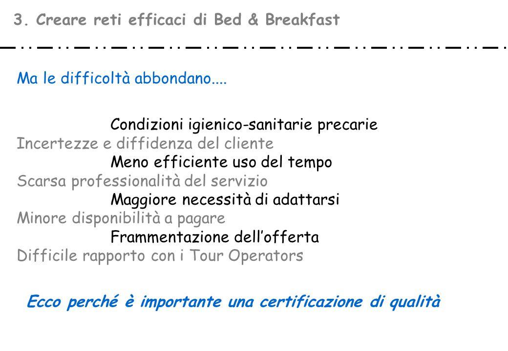 3. Creare reti efficaci di Bed & Breakfast Condizioni igienico-sanitarie precarie Incertezze e diffidenza del cliente Meno efficiente uso del tempo Sc