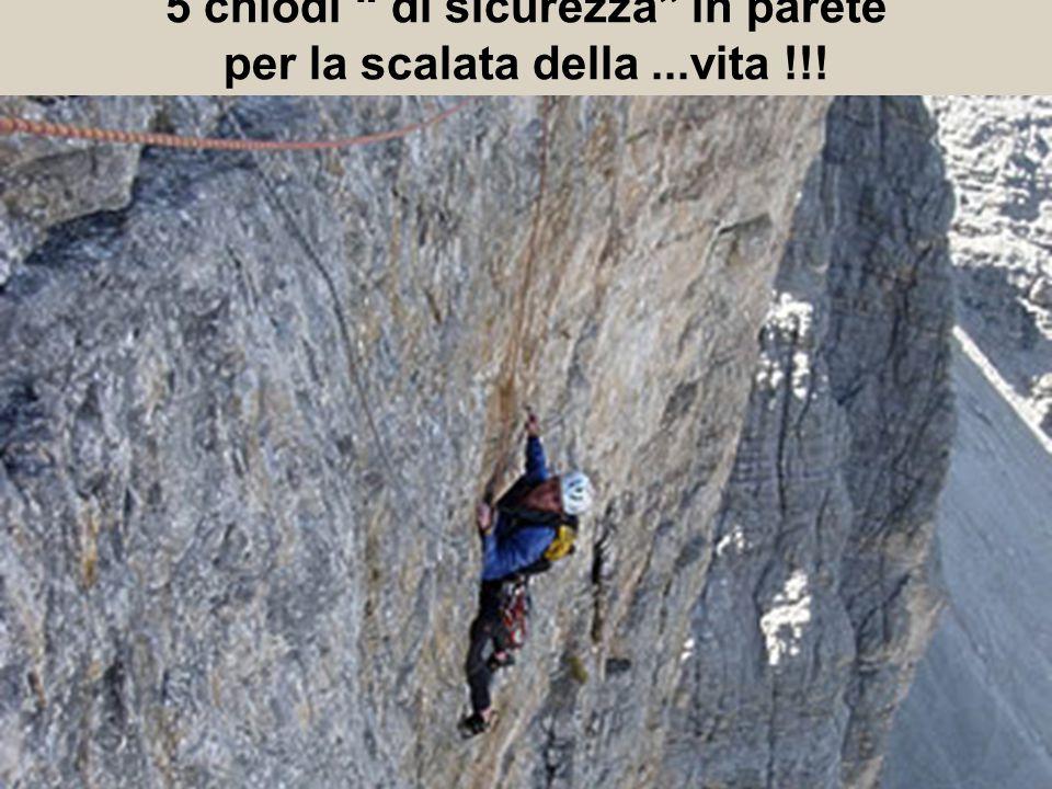5 chiodi di sicurezza in parete per la scalata della...vita !!!