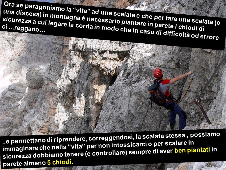 Ora se paragoniamo la vita ad una scalata e che per fare una scalata (o una discesa) in montagna è necessario piantare in parete i chiodi di sicurezza a cui legare la corda in modo che in caso di difficoltà od errore ci...reggano…..e permettano di riprendere, correggendosi, la scalata stessa, possiamo immaginare che nella vita per non intossicarci o per scalare in sicurezza dobbiamo tenere (e controllare) sempre di aver ben piantati in parete almeno 5 chiodi.