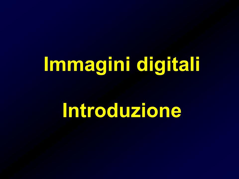 Immagini digitali I sistemi di formazione forniscono l'intensità luminosa nei vari punti dell'immagine sotto forma di segnali analogici Immagine digitale: rappresentazione numerica di un oggetto (immagine) La digitalizzazione è quel processo che consente di convertire il segnale analogico in segnale digitale L'immagine in forma digitale può essere elaborata tramite un calcolatore