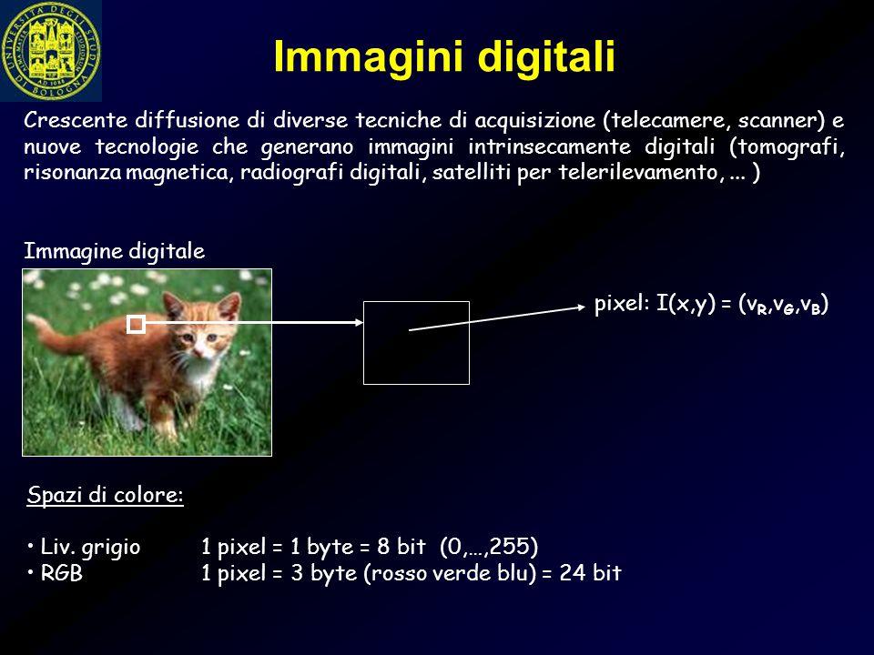 Crescente diffusione di diverse tecniche di acquisizione (telecamere, scanner) e nuove tecnologie che generano immagini intrinsecamente digitali (tomo