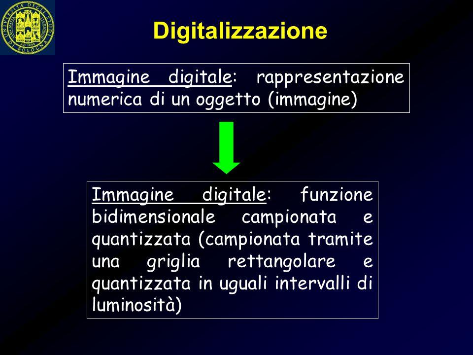 Immagine digitale: rappresentazione numerica di un oggetto (immagine) Immagine digitale: funzione bidimensionale campionata e quantizzata (campionata
