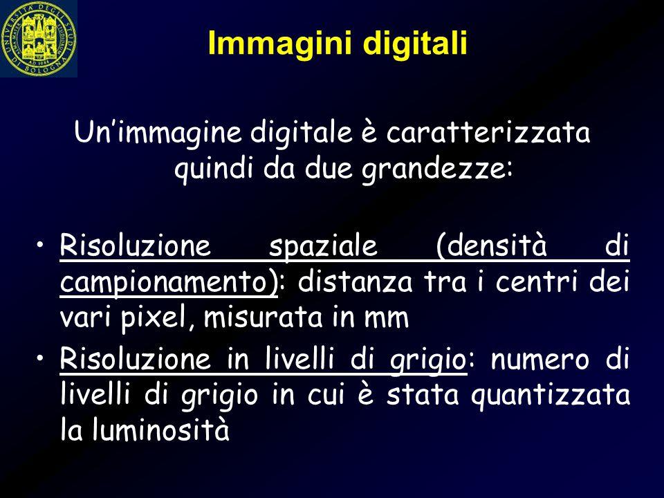 Immagini digitali Un'immagine digitale è caratterizzata quindi da due grandezze: Risoluzione spaziale (densità di campionamento): distanza tra i centr
