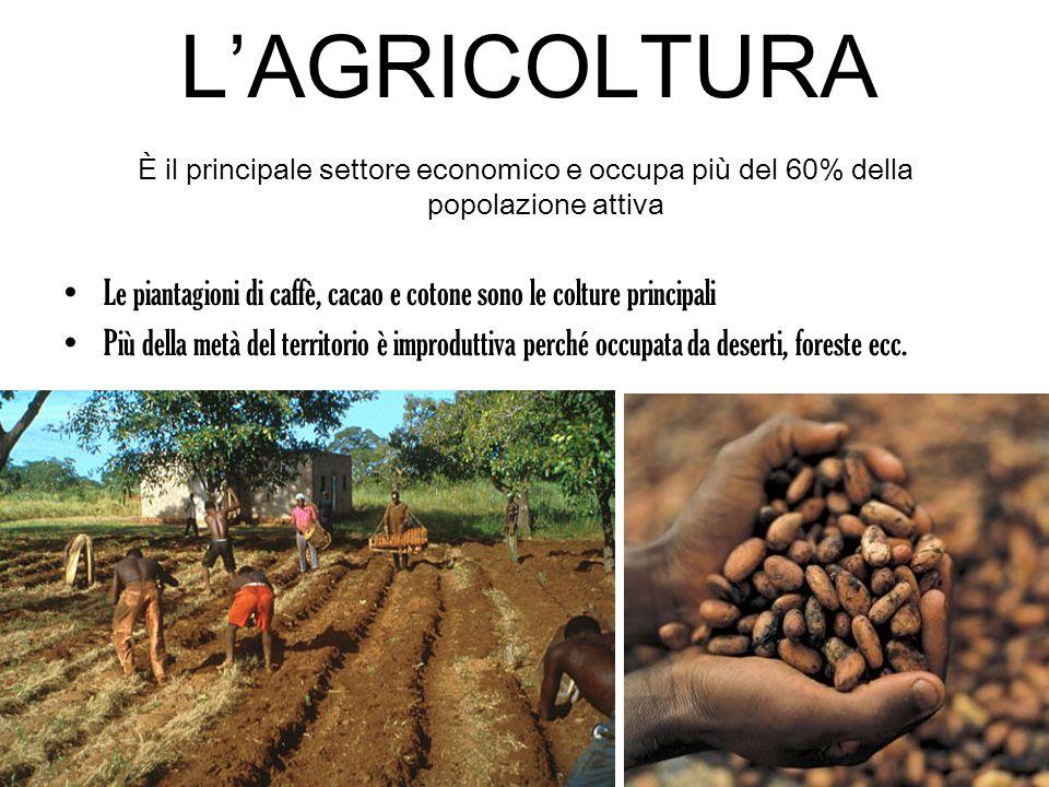L'AGRICOLTURA È il principale settore economico e occupa più del 60% della popolazione attiva Le piantagioni di caffè, cacao e cotone sono le colture principali Più della metà del territorio è improduttiva perché occupata da deserti, foreste ecc.
