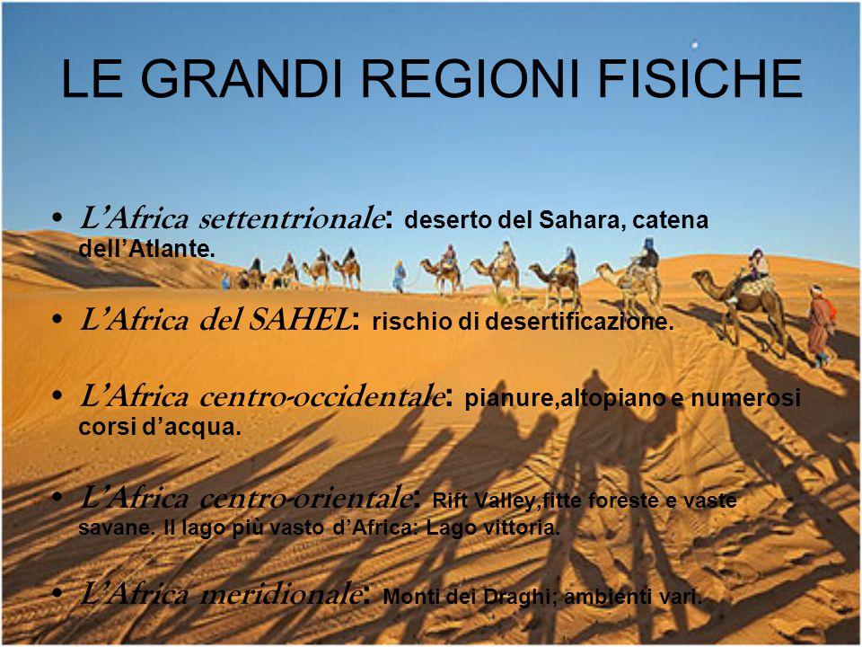 LE GRANDI REGIONI FISICHE L'Africa settentrionale : deserto del Sahara, catena dell'Atlante. L'Africa del SAHEL : rischio di desertificazione. L'Afric