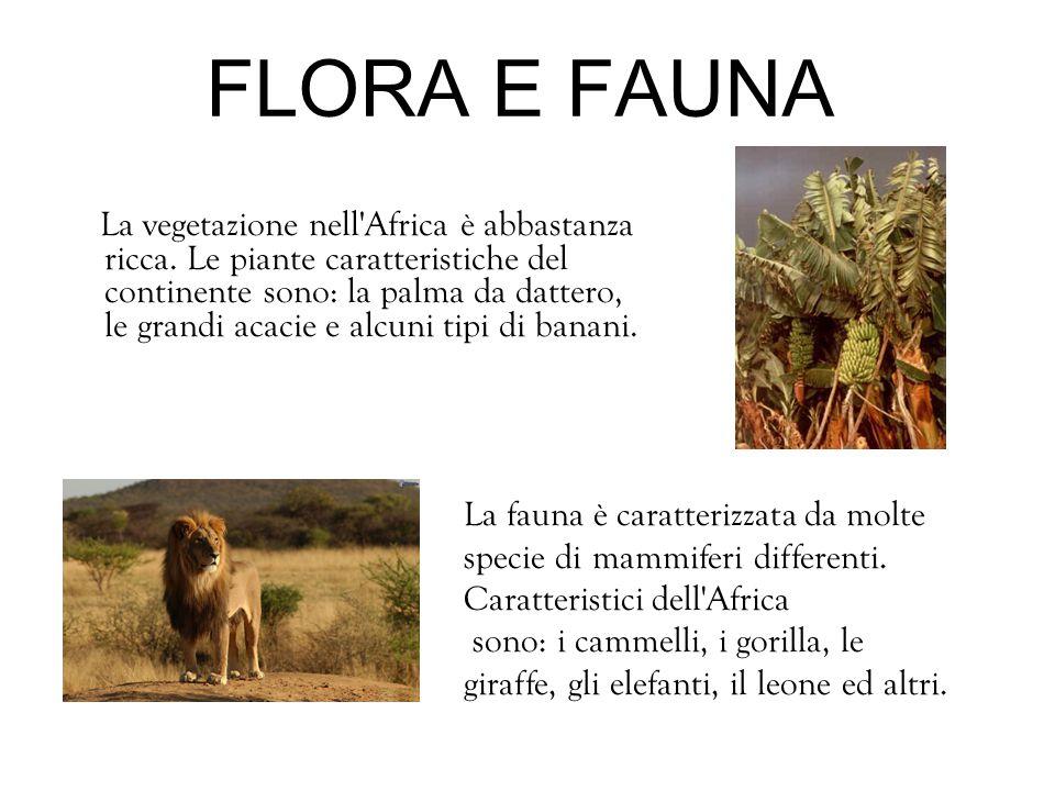 FLORA E FAUNA La vegetazione nell'Africa è abbastanza ricca. Le piante caratteristiche del continente sono: la palma da dattero, le grandi acacie e al