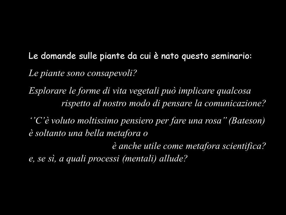 Le domande sulle piante da cui è nato questo seminario: Le piante sono consapevoli? Esplorare le forme di vita vegetali può implicare qualcosa rispett