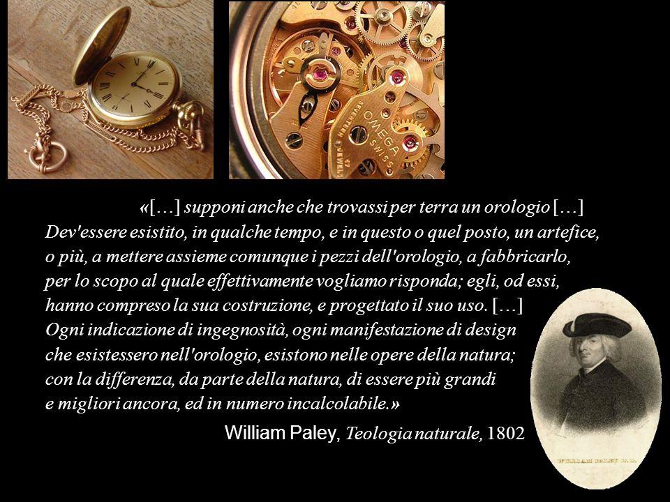 Biston betularia «[…] supponi anche che trovassi per terra un orologio […] Dev'essere esistito, in qualche tempo, e in questo o quel posto, un artefic