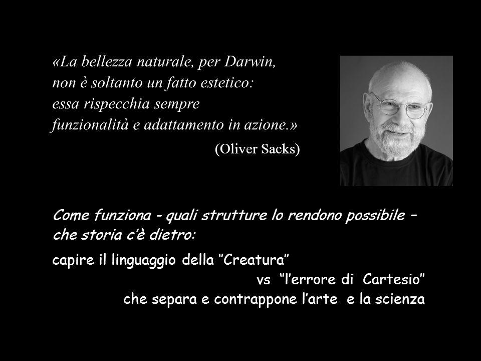 «La bellezza naturale, per Darwin, non è soltanto un fatto estetico: essa rispecchia sempre funzionalità e adattamento in azione.» (Oliver Sacks) Come