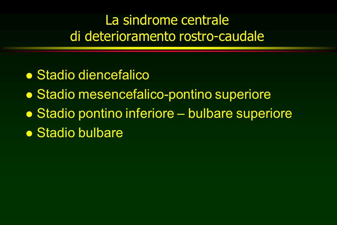 La sindrome centrale di deterioramento rostro-caudale l Stadio diencefalico l Stadio mesencefalico-pontino superiore l Stadio pontino inferiore – bulb