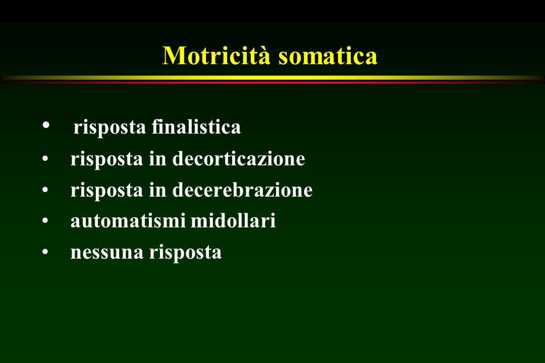Motricità somatica risposta finalistica risposta in decorticazione risposta in decerebrazione automatismi midollari nessuna risposta