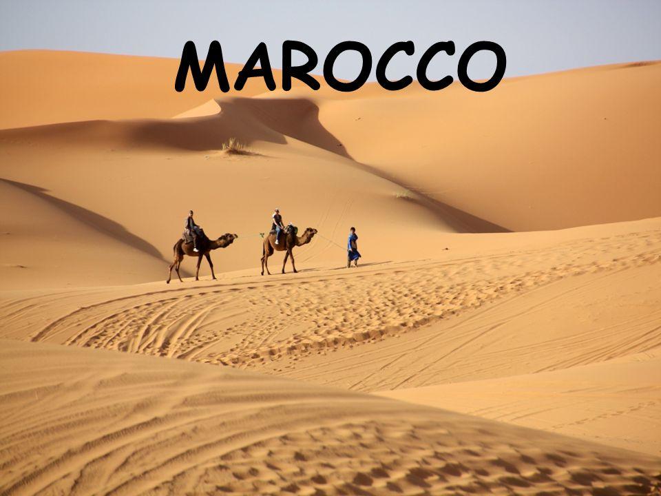 L'ECONOMIA Il Marocco è ricco di risorse naturali che vengono utilizzate nell'industria Nel Marocco ci sono:  Industrie tessili  Industrie chimiche Circa il 20% del territorio marocchino è coltivabile infatti si coltivano:  Cereali  Canna da zucchero  cotone