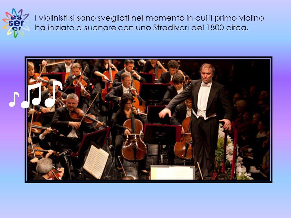 I violinisti si sono svegliati nel momento in cui il primo violino ha iniziato a suonare con uno Stradivari del 1800 circa.