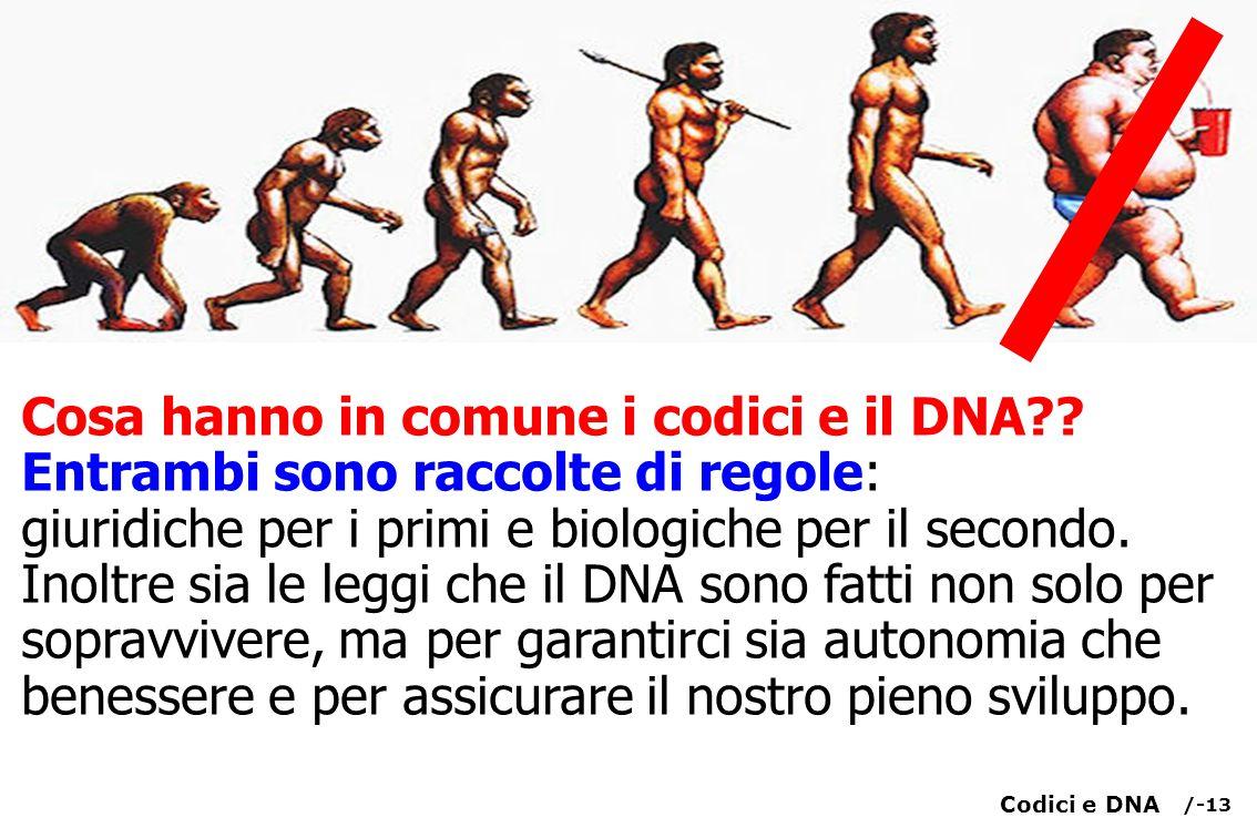 /-13 Cosa hanno in comune i codici e il DNA?.