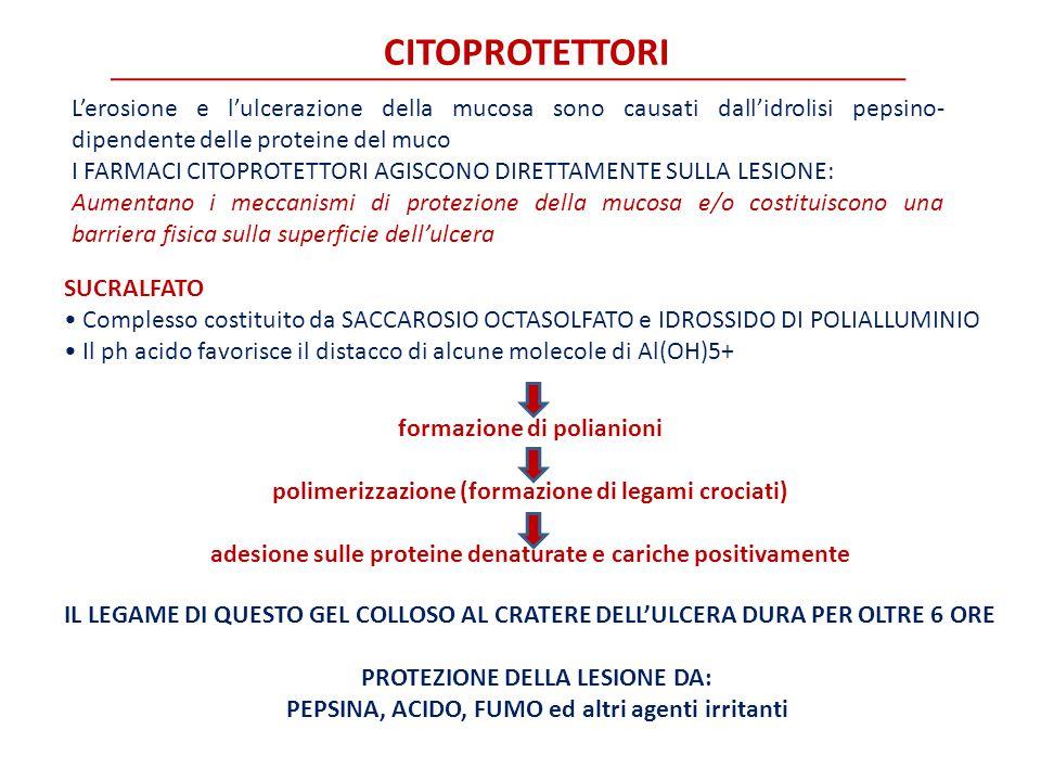 CITOPROTETTORI L'erosione e l'ulcerazione della mucosa sono causati dall'idrolisi pepsino- dipendente delle proteine del muco I FARMACI CITOPROTETTORI