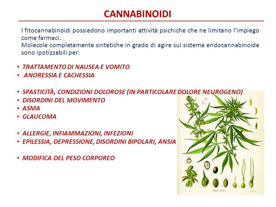 CANNABINOIDI I fitocannabinoidi possiedono importanti attività psichiche che ne limitano l'impiego come farmaci. Molecole completamente sintetiche in