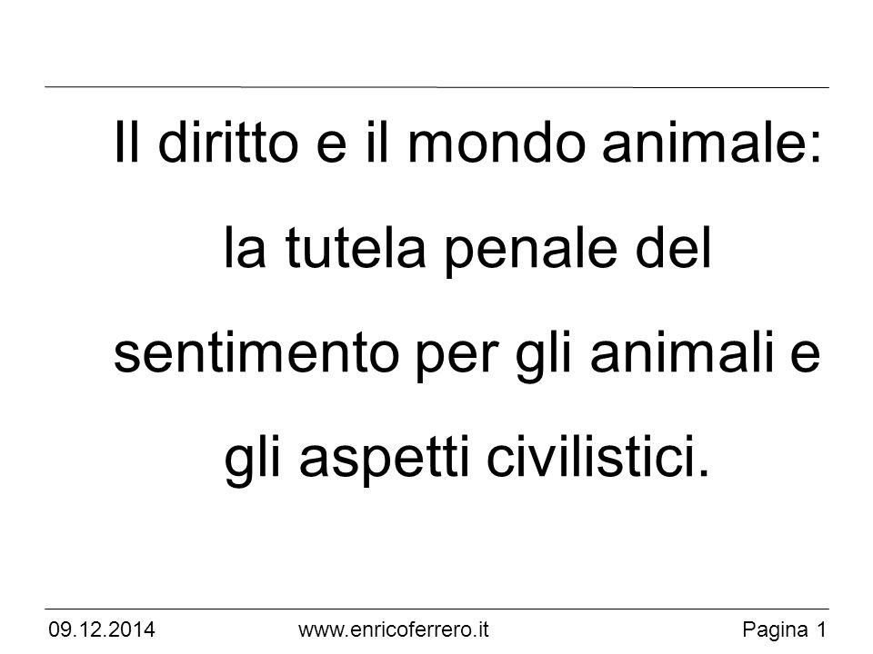 Il diritto e il mondo animale: la tutela penale del sentimento per gli animali e gli aspetti civilistici.