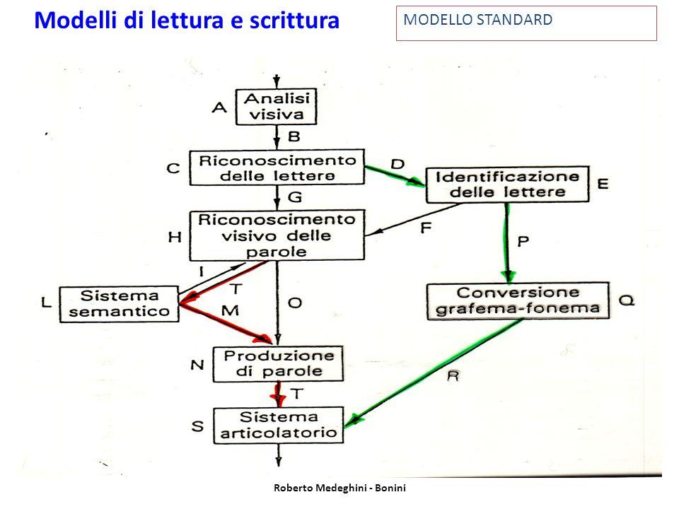 MODELLO STANDARD Modelli di lettura e scrittura Roberto Medeghini - Bonini