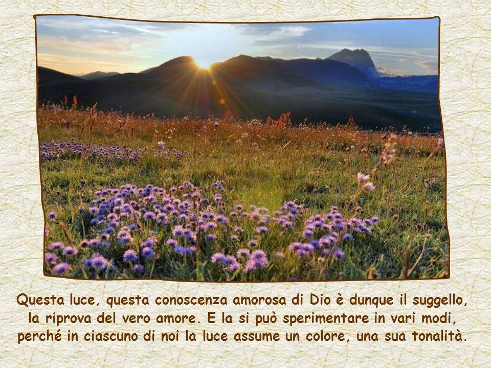 Ed è per questo amore che si fa strada in noi la sua luce, la luce di Gesù, secondo la sua promessa: A chi mi ama...