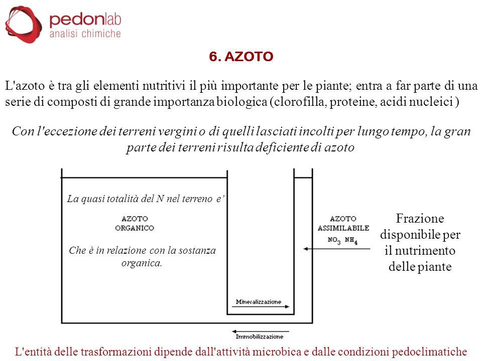 6. AZOTO L'azoto è tra gli elementi nutritivi il più importante per le piante; entra a far parte di una serie di composti di grande importanza biologi