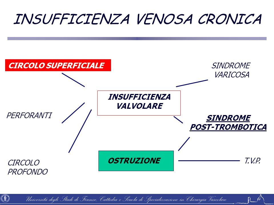 Università degli Studi di Firenze, Cattedra e Scuola di Specializzazione in Chirurgia Vascolare CIRCOLO SUPERFICIALE PERFORANTI CIRCOLO PROFONDO INSUF