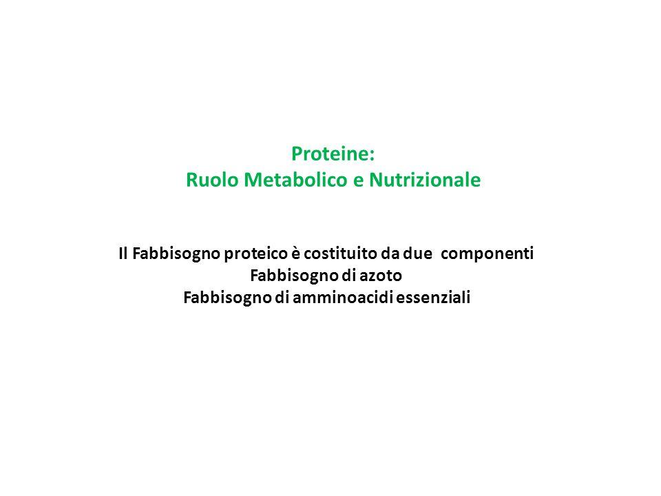 Proteine: Ruolo Metabolico e Nutrizionale Il Fabbisogno proteico è costituito da due componenti Fabbisogno di azoto Fabbisogno di amminoacidi essenzia