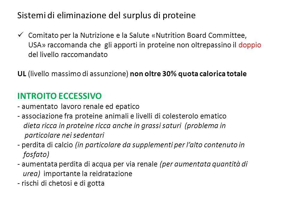 Sistemi di eliminazione del surplus di proteine Comitato per la Nutrizione e la Salute «Nutrition Board Committee, USA» raccomanda che gli apporti in