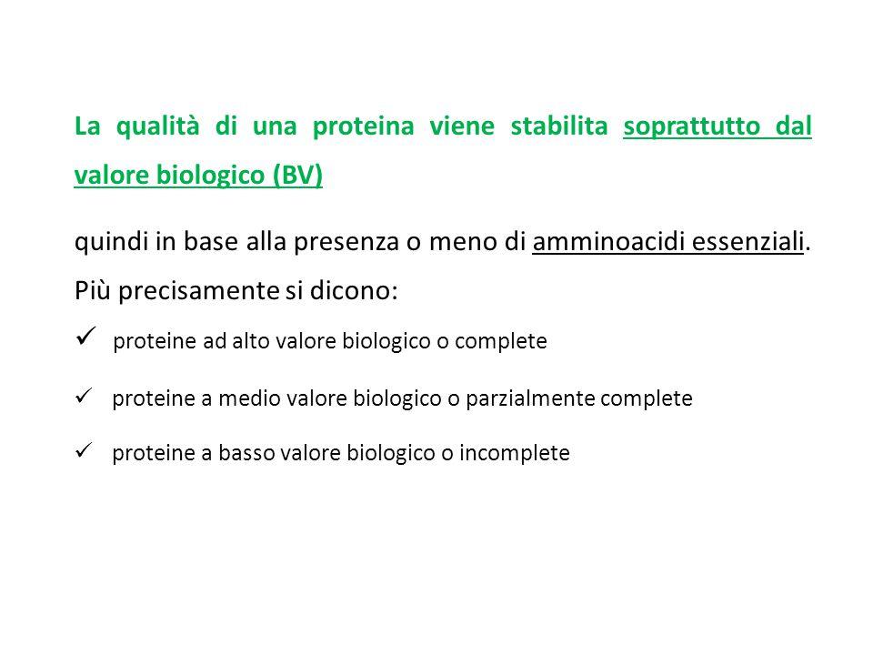 La qualità di una proteina viene stabilita soprattutto dal valore biologico (BV) quindi in base alla presenza o meno di amminoacidi essenziali. Più pr