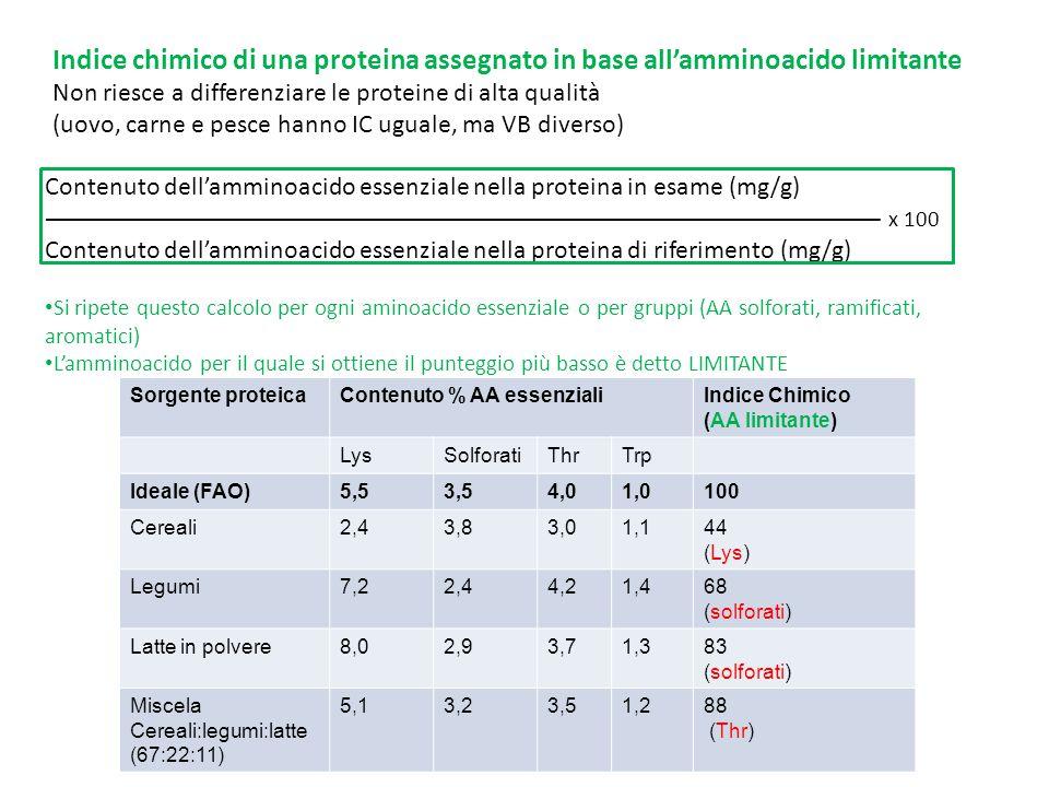 Contenuto dell'amminoacido essenziale nella proteina in esame (mg/g) Contenuto dell'amminoacido essenziale nella proteina di riferimento (mg/g) Si rip