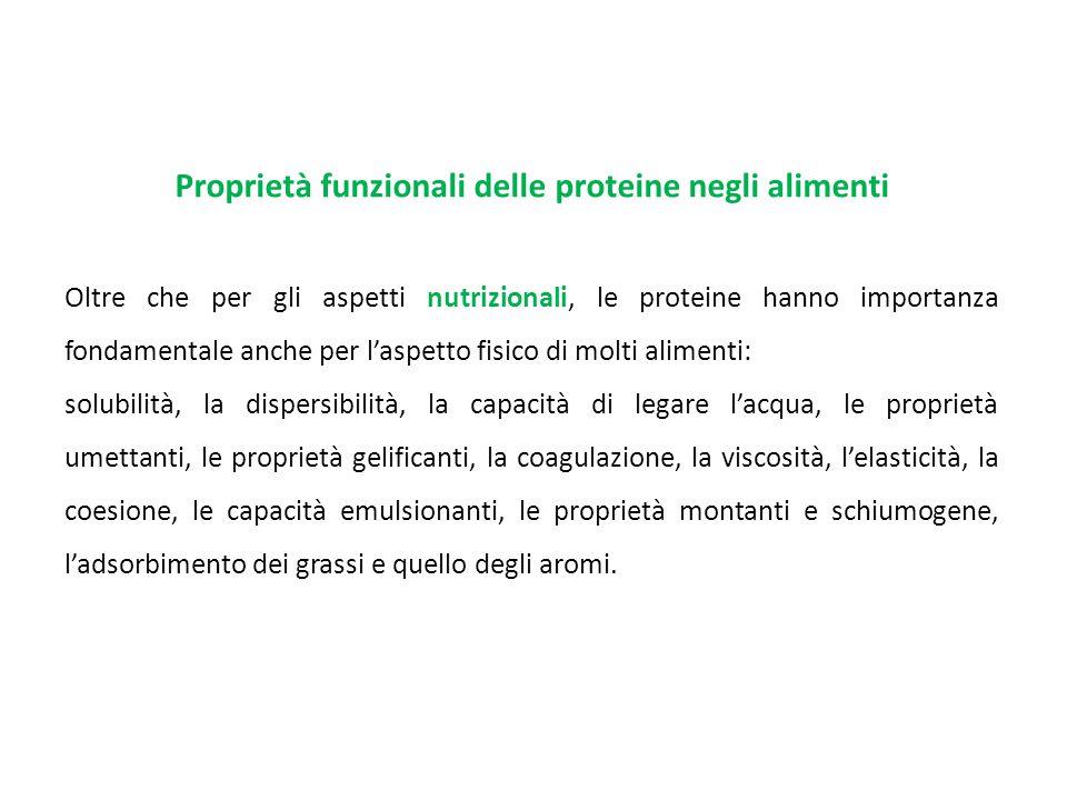 Proprietà funzionali delle proteine negli alimenti Oltre che per gli aspetti nutrizionali, le proteine hanno importanza fondamentale anche per l'aspet