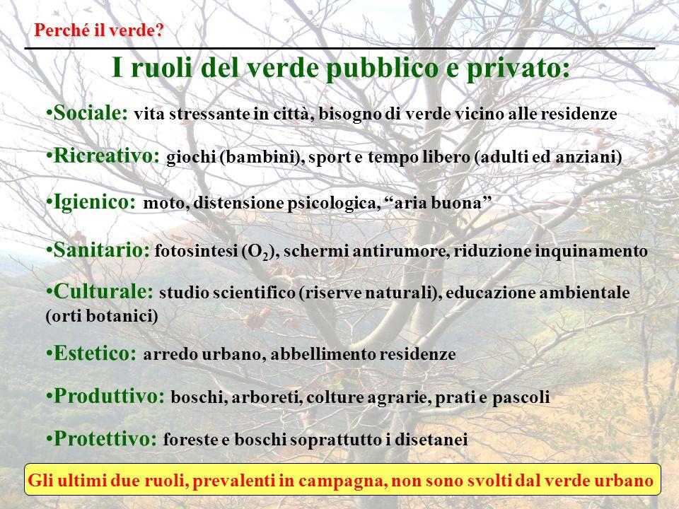 I ruoli del verde pubblico e privato: Perché il verde.
