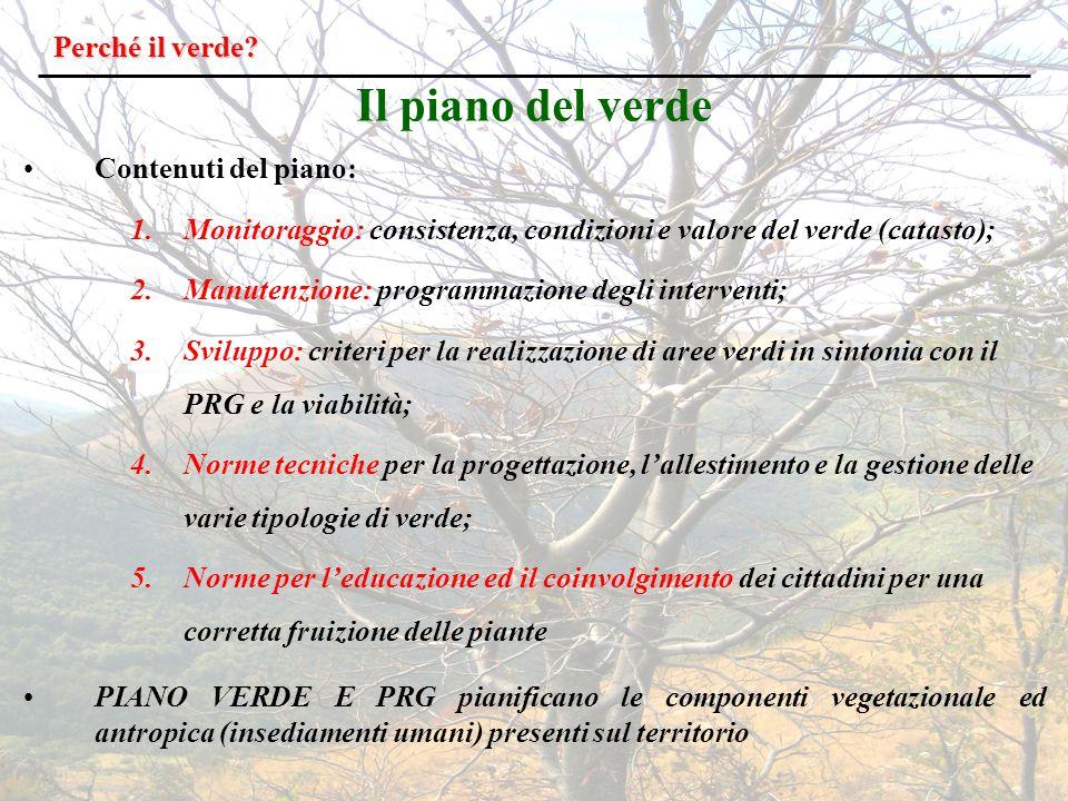 Esemplari di Pinus Pinea che interferiscono con un fabbricato
