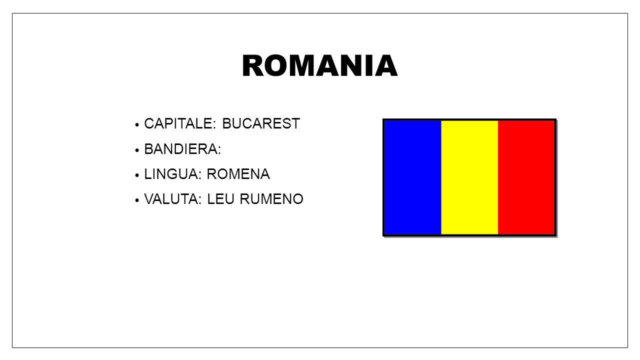 PAESI BASSI CAPITALE: AMSTERDAM BANDIERA: LINGUA: OLANDESE VALUTA: EURO
