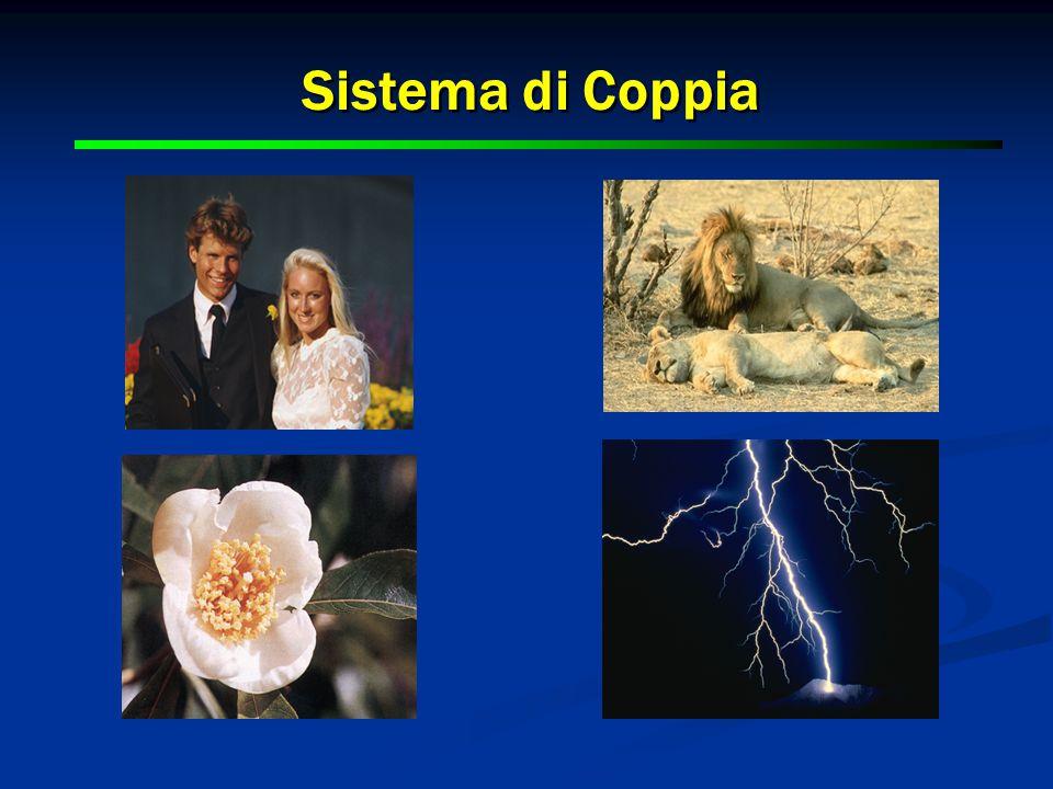 10 Sistema di Coppia